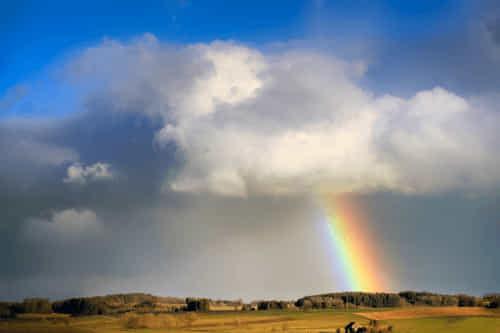 Regenbogen aus Woke